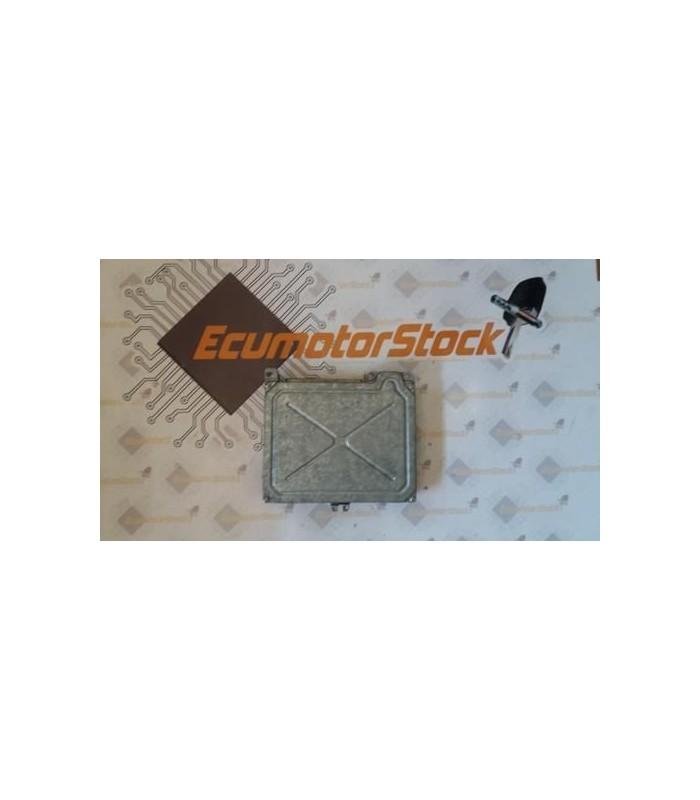 RENAULT CLIO S100805101L S 100805101 L